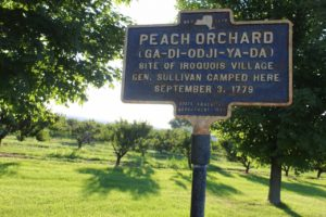 Hector Peach Orchard historic marker on Rt 414